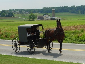 An Amish buggy in Lancaster, Pa.