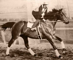 """""""Seabiscuit workout with GW up"""" by Seabiscuit Heritage Foundation - Seabiscuit Heritage Foundation. Licensed under Public Domain via Wikimedia Commons - https://commons.wikimedia.org/wiki/File:Seabiscuit_workout_with_GW_up.jpg#/media/File:Seabiscuit_workout_with_GW_up.jpg"""